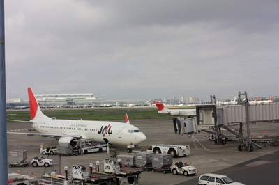 JAL1381