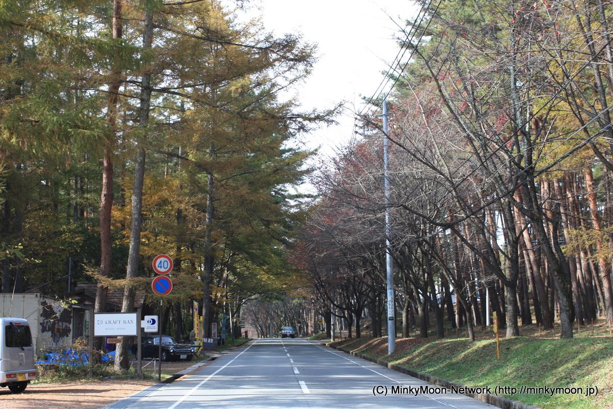 小渕沢旅行 宿泊はリゾナーレ