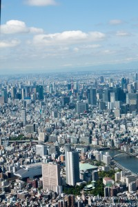 東京タワーと両国国技館