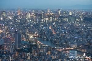 東京タワーと隅田川