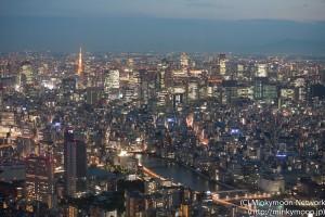 東京スカイツリー展望台からの夜景2