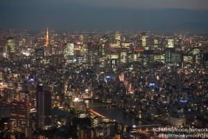 東京スカイツリー展望台からの夜景 3