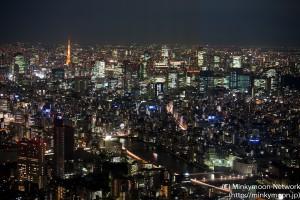 東京スカイツリー展望台からの夜景 6