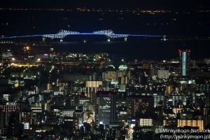 東京スカイツリーから見えるゲートブリッジ