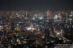 夕闇に映える東京タワー