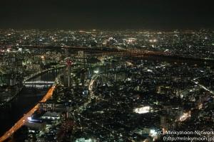江戸川の夜景