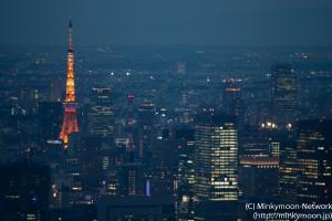 東京タワーにズーム