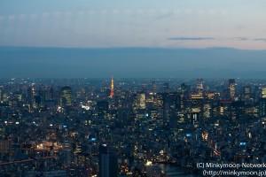 東京タワーの夕暮れ