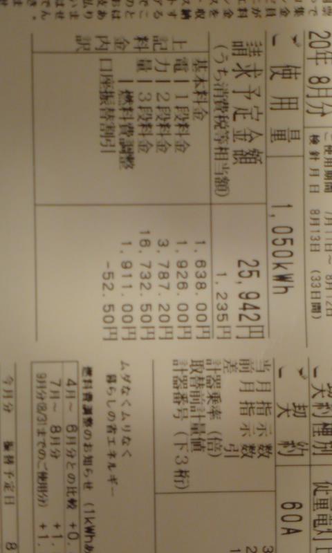 反eco チーム プラス6% 1Mw/月