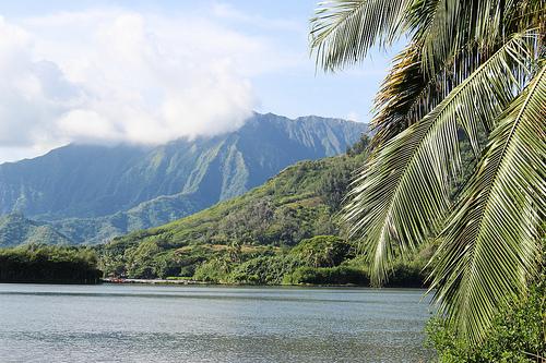子連れハワイ旅行 クアロア・ランチのシークレットビーチに大満足!