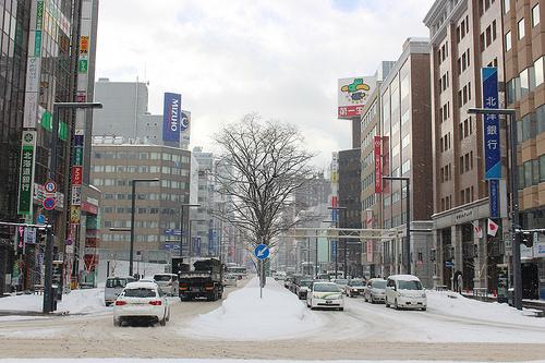 さっぽろ雪祭りに東京から日帰りで行ってみた