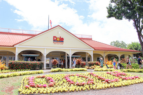 パイナップルと言えばドール。ハワイのドールプランテーションに行ってみました