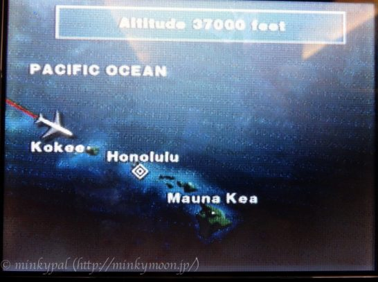 ハワイ旅行ホノルル行き エコノミークラス